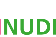 logo-roh-nudeln-2x